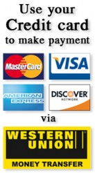 Use your Credit Card to make payment